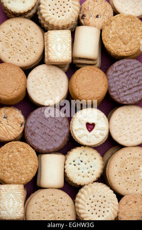 Assorted Biscuits - Stock Photo