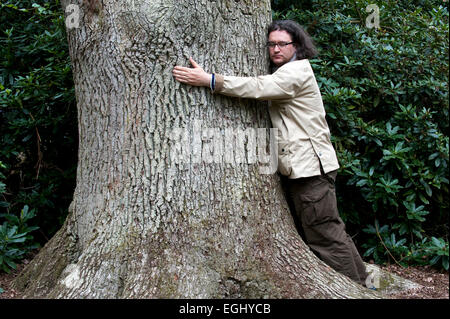 Man hugs big tree england - Stock Photo
