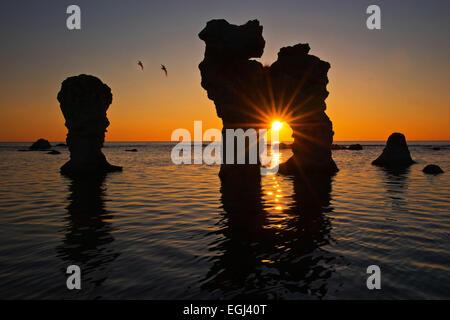 Raukarfelsen rocks on the island Farö near Gotland, Sweden, silhouette, sundown, - Stock Photo