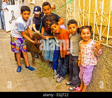 Kids with their sheep on Eid al-Adha in Fes Morocco Africa - Stock Photo