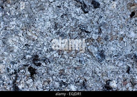 ash coals burnt wood background - Stock Photo