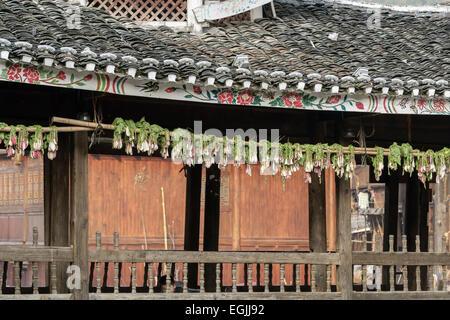 Radishes drying on a wind and rain bridge, Zhaoxing Dong village, Guizhou Province, China - Stock Photo