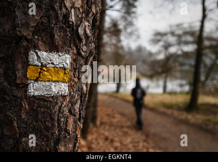 An yellow touristic path in forrest in the Bohemian Paradise, Czech Republic, February 23, 2015. (CTK Photo/Radek - Stock Photo