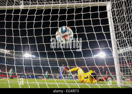 VIENNA, AUSTRIA - AUGUST 28, 2014: Jan Novota (#1 Rapid) fails to catch the ball in an UEFA Europa League qualifying - Stock Photo