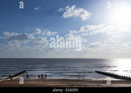 Group of dog walkers at the waters edge of the beach on a winters day - Stock Photo