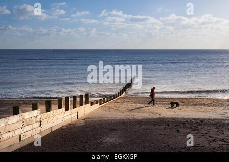Man walking dogs on deserted winter beach past breakwater in winter - Stock Photo