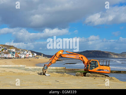 Levelling the beach at Lyme Regis with  a JCB digger, Dorset, England UK - Stock Photo