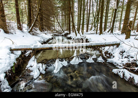 River Ruhr, winter, the first 1-2 kilometer, the river is still a little creek, - Stock Photo