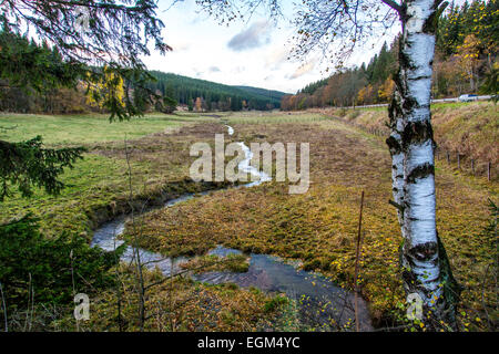 River Ruhr, still a little creek, only 2-3 Kilometer after the Ruhr spring, in the mountains of the 'Sauerland' - Stock Photo