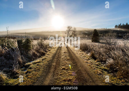 Sauerland area, mid-mountain area, high heath area, - Stock Photo