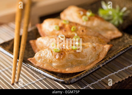 A plate of delicious asian pot stickers with scallions. - Stock Photo