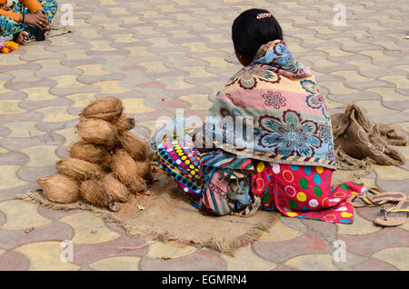 Indian woman wearing colourful clothes selling coconuts outside Ram Raja Temple Orchha Madhya Pradesh India - Stock Photo