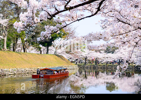 Hikone, Japan moat around Hikone Castle in the spring. - Stock Photo