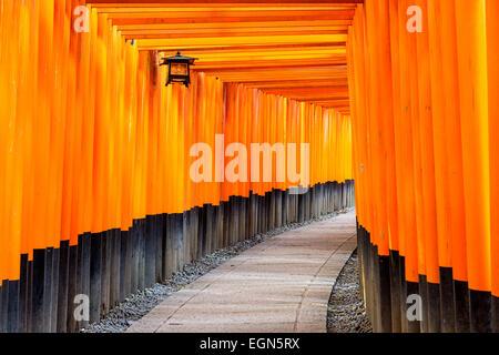 Fushimi Inari torii gates in Kyoto, Japan. - Stock Photo