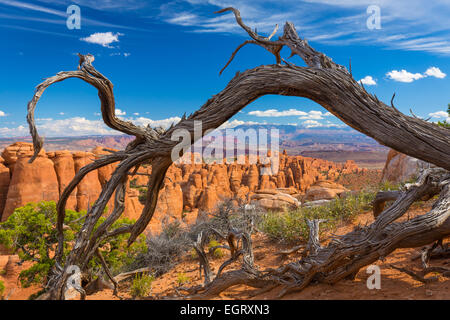 The Fiery Furnace is a collection of narrow sandstone canyons in Arches National Park in Utah, United States. - Stock Photo