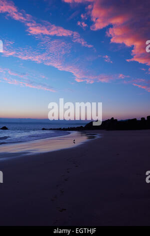 Pink clouds at sunrise over Porthgwidden beach and Bay of St Ives Cornwall England Europe - Stock Photo