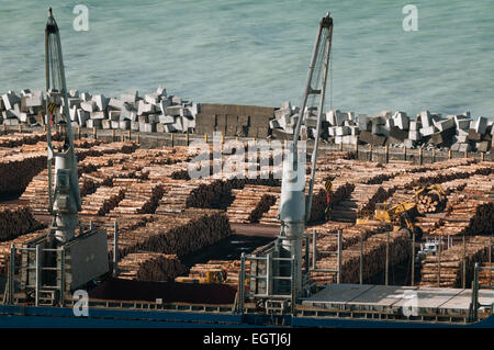 Timber in Napier Port, Napier, Hawkes Bay, North Island, New Zealand. - Stock Photo