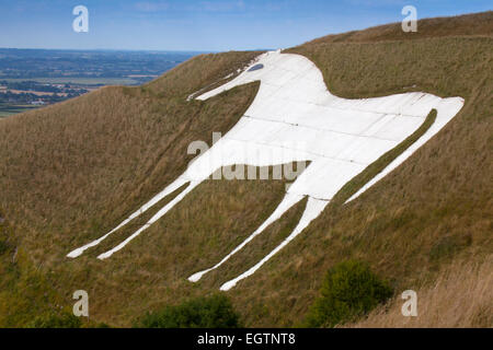 A landscape view of the Westbury White Horse on the edge of Bratton Downs, Wiltshire, England - Stock Photo