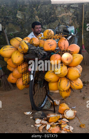 Coconut vendor in Galle, Sri Lanka - Stock Photo