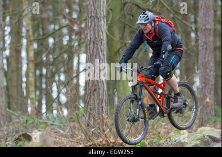 Man Mountain Biking Over Rocks Anchorage Hillside Trails Stock