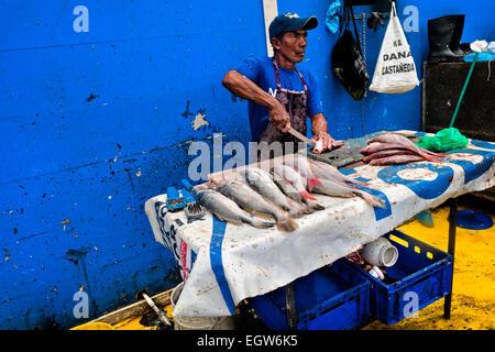 A Panamanian fisherman cleans the fish at Mercado de Mariscos seafood and fish market in Panama City, Panama. - Stock Photo