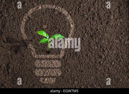 Green plant in light bulb silhouette on soil background - Stock Photo