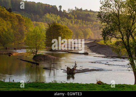 Renaturation part of river Ruhr, rebuild in the way the river was in its origin, nature preserve, landscape protection - Stock Photo