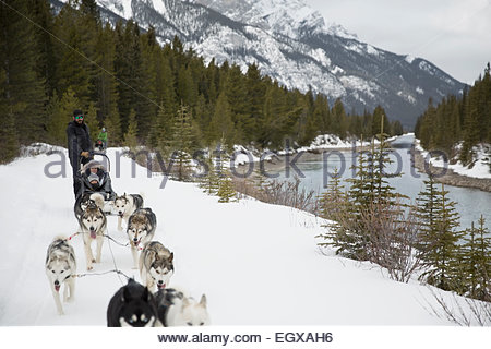 Dogsled moving along snowy riverside below mountains - Stock Photo