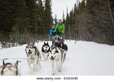 Family dogsledding in snow - Stock Photo