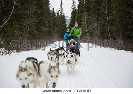Family dogsledding in snow - Stock Photo
