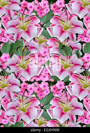 Background from white lilies andpink flowerson a black background - Stock Photo
