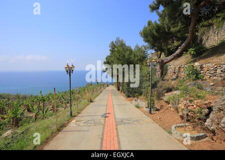 Walkway to the sea - Stock Photo