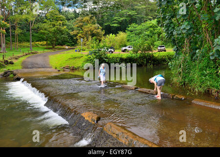 River crossing at picnic area in Keahua Forestry Arboretum (part of Wailua River State Park), Kauai, Hawaii, USA - Stock Photo