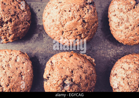 Chocolate muffins with berries on a baking sheet. Top view - Stock Photo