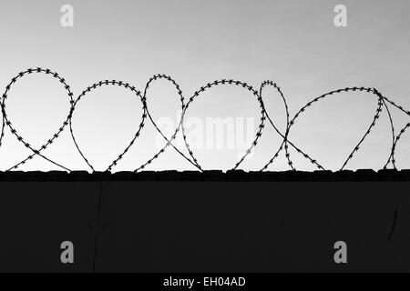 Coils of razor wire protecting a property, seen in detail. - Stock Photo