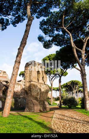 Remains of Domus Severiana at the Palatine Hill. Rome, Province of Rome, Italy. - Stock Photo