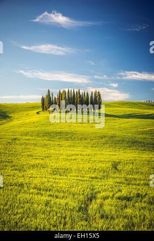 Tuscany at spring - Stock Photo