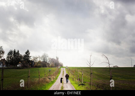 Rear view of man walking with dog on dirt road amidst farm against cloudy sky - Stock Photo