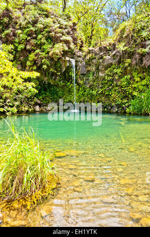 day view of Spring fed pool on the road to Hana - Maui, Hawaii - Stock Photo