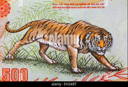 Growling tiger from 500 dong banknote, South Vietnam, 1972 - Stock Photo