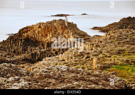 The Giant's Causeway, located in County Antrim on the northeast coast of Northern Ireland. - Stock Photo