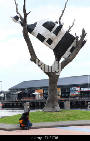 Tourist taking picture of Cow Up a Tree sculpture near Docklands Melbourne Victoria Australia - Stock Photo