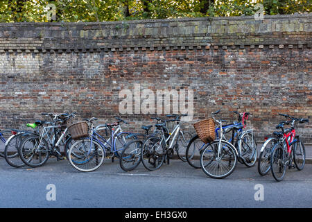 Bicycles lined and chained up in street next to weather worn brick wall. Cambridge England UK. - Stock Photo