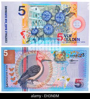 5 gulden banknote, Red-necked Woodpecker (Campephilus rubricollis), Giant Granadilla (Passiflora quadrangularis), - Stock Photo
