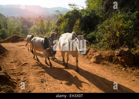 Kalaw district Myanmar (Burma) - Stock Photo