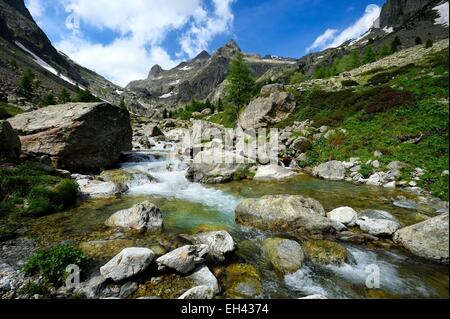 France, Alpes Maritimes, Parc National du Mercantour (Mercantour national park), Haute Vesubie, Gordolasque valley - Stock Photo