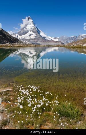 Switzerland, canton of Valais, Zermatt, the Matterhorn (4478m) from Lake Riffelsee - Stock Photo