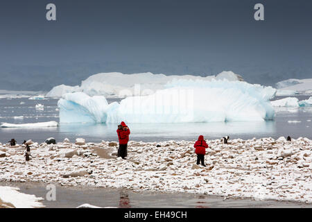 Antarctica, Neko Harbour, visitors viewing gentoo penguins amongst snow covered rocks - Stock Photo