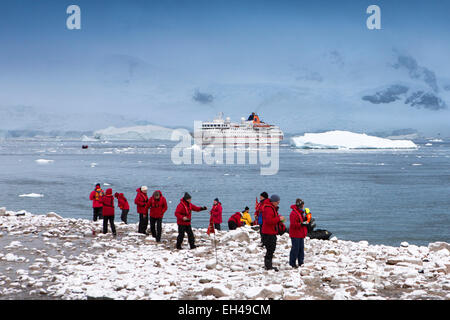 Antarctica, Neko Harbour, MS Hanseatic cruise ship viewing gentoo penguins - Stock Photo