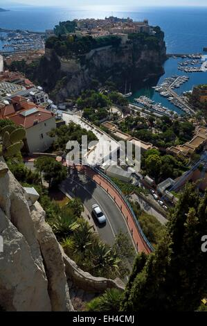 Principality of Monaco, Monaco, the Exotic Garden with a huge variety of Succulent plant species, the Rock and the - Stock Photo